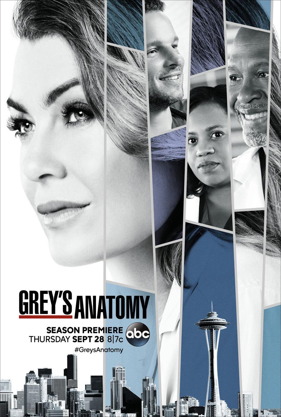 Temporada 14 poster for Grey's Anatomy