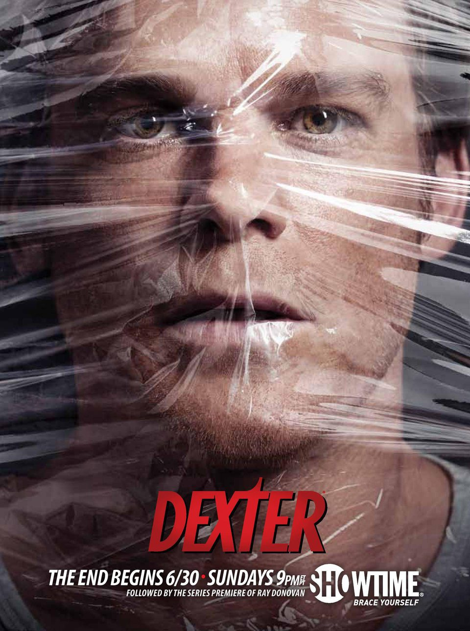 Temporada 8 poster for Dexter