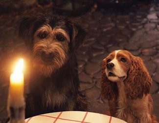 Disney's Live-Action 'Lady and the Tramp': Visually Captivating, But Failures to Capture the Magic and Charm of the Original