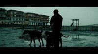 'Dogman' Trailer